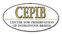 Center For Preservation Of Indigenous Breeds